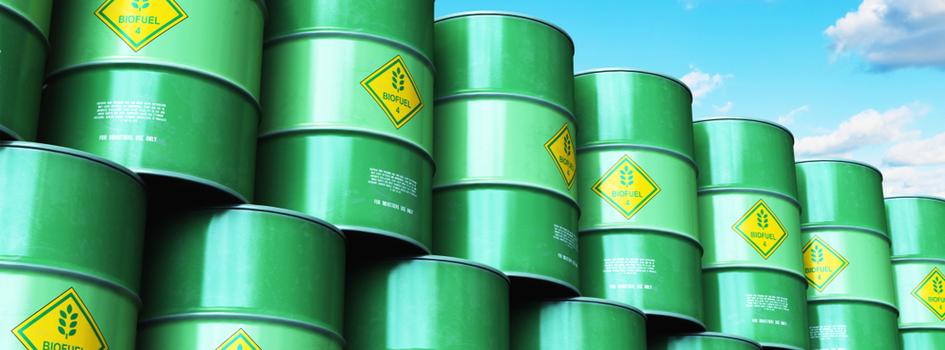 biodiesel barrels